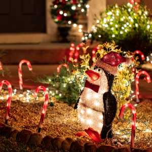 solar candy canes and penguin Christmas yard decoration