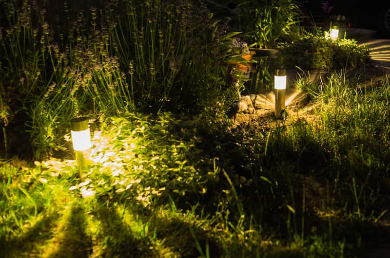 solar LED lights illuminating the front yard lawn