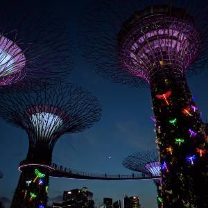 best solar powered dragonfly lights